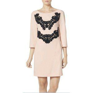 NEW Eliza J Blush Pink Black Lace Applique Dress 8